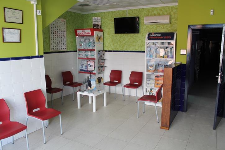 Instalaciones de cl nica veterinaria jayda en tomelloso - Diseno de clinicas veterinarias ...